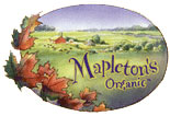 Mapleton-Organic-Ice-Cream